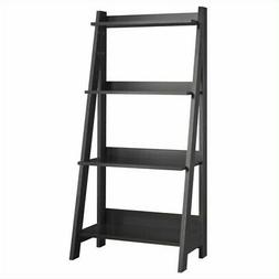 Alamosa Ladder Bookshelf